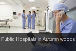 Public Hospitals in Autumn woods